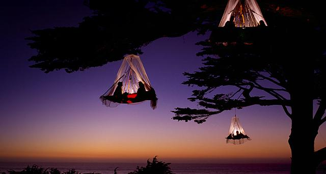 Climbers in three portaledges with mosquito netting camp in trees on the California Coast near Elk, California