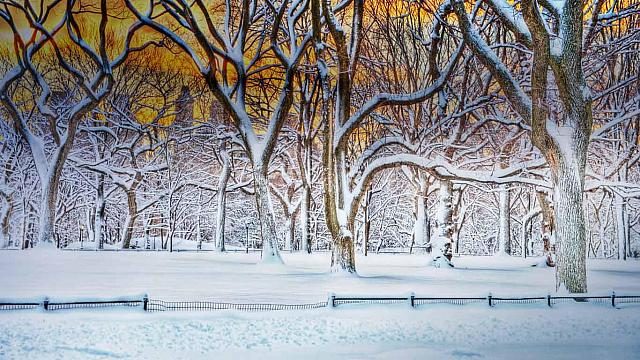 Sunrise in Central Park after a snowstorm in New York City, New York (© Mitchell Funk/Getty Images)