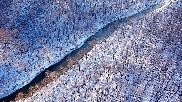 Aerial view of a creek flowing through the countryside of Virginia (© Cameron Davidson/Corbis)