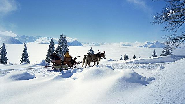 Horse sleigh, Switzerland (© Sonderegger Christof/Alamy)