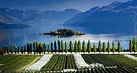 Rippon vineyards and Lake Wanaka, Central Otago, South Island, New Zealand