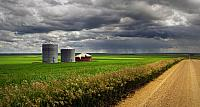 A country road with fields and granaries and an approaching rain storm in Oyen, Alberta, Canada