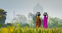 Women carrying water jugs near the Taj Mahal in Agra, India