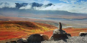 Arctic ground squirrel, Denali National Park and Preserve, Alaska (© Ning Liu)