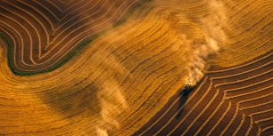 Combine harvesting wheat near  Jamestown, North Dakota (© Richard Hamilton Smith/Gallery Stock)