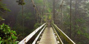 Hanging bridge across Tsocowis Creek, West Coast Trail on Vancouver Island, British Columbia, Canada (© Sergio Ballivian/Tandem Stock)