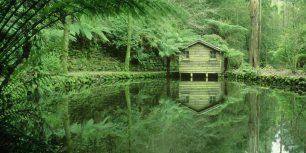 Alfred Nicholas Memorial Gardens in the Dandenong Ranges, Victoria, Australia (© Bob Wickham/Photolibrary/Getty Images)