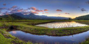 Hanalei Valley, Kauai, Hawaii (© Ian Philip Miller/Getty Images)