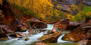 North Fork of the Virgin River, Zion Canyon, Utah (© Shutterstock)