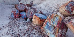 Petrified wood in the Petrified Forest National Park, Arizona (© Ian Shive/Tandem Stills + Motion)