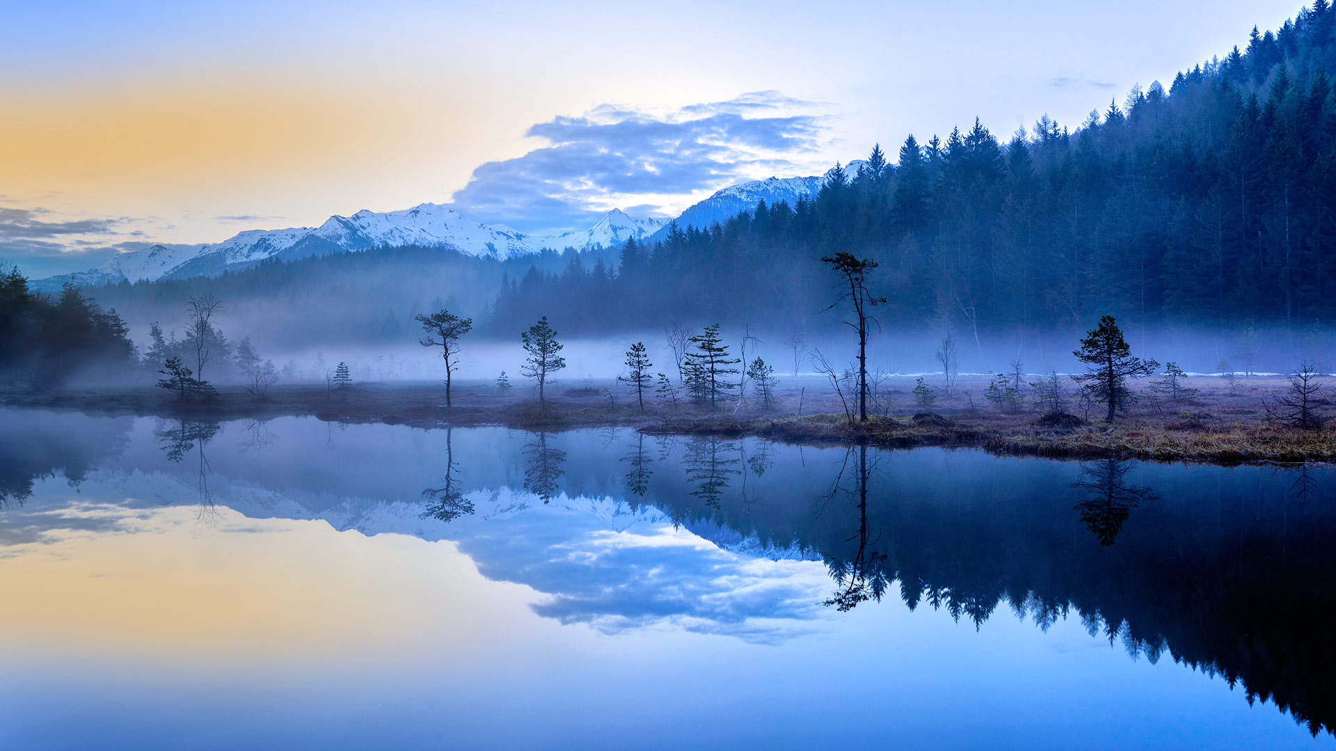 The misty bogs of Pian Gembro Regional Reserve near Aprica, Italy (© Robert Harding World Imagery/Offset)