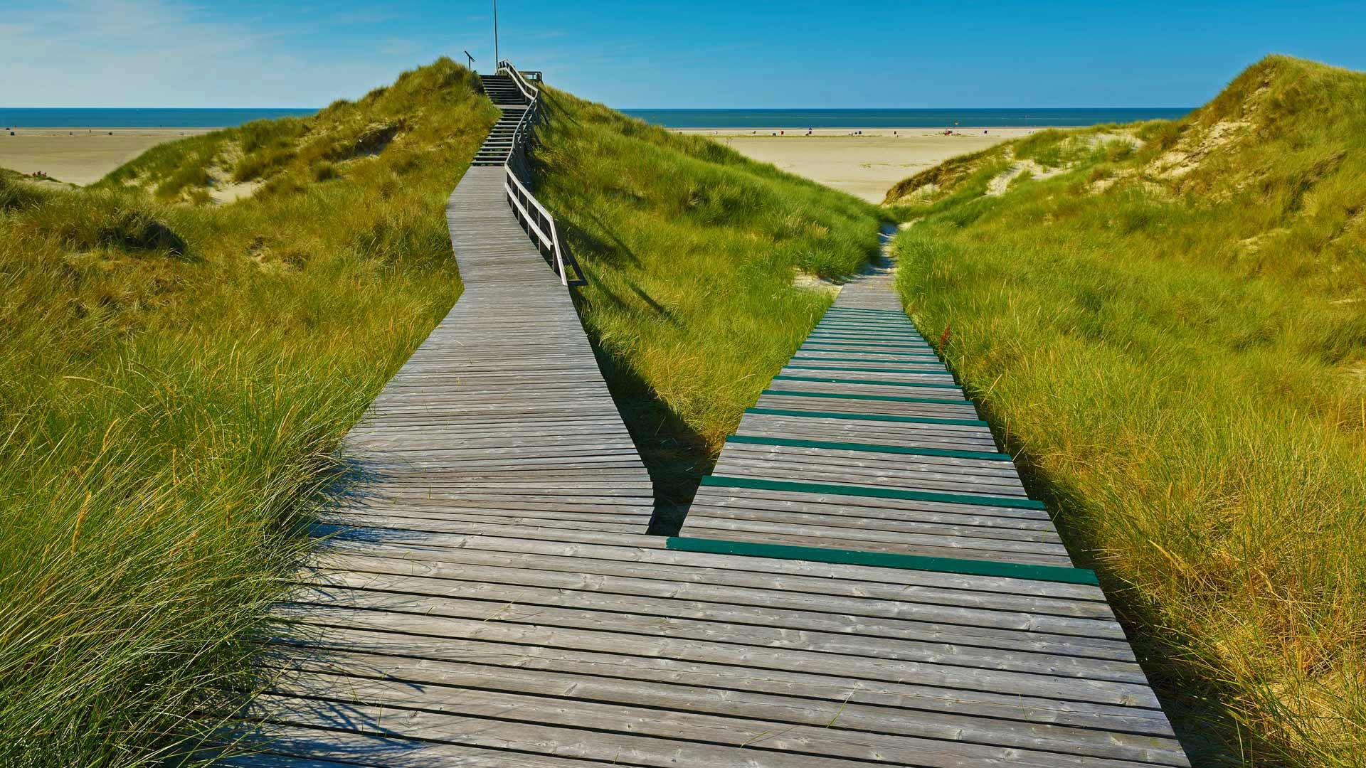 A boardwalk in Norddorf on Amrum Island, Germany (© Raimund Linke/Getty Images)