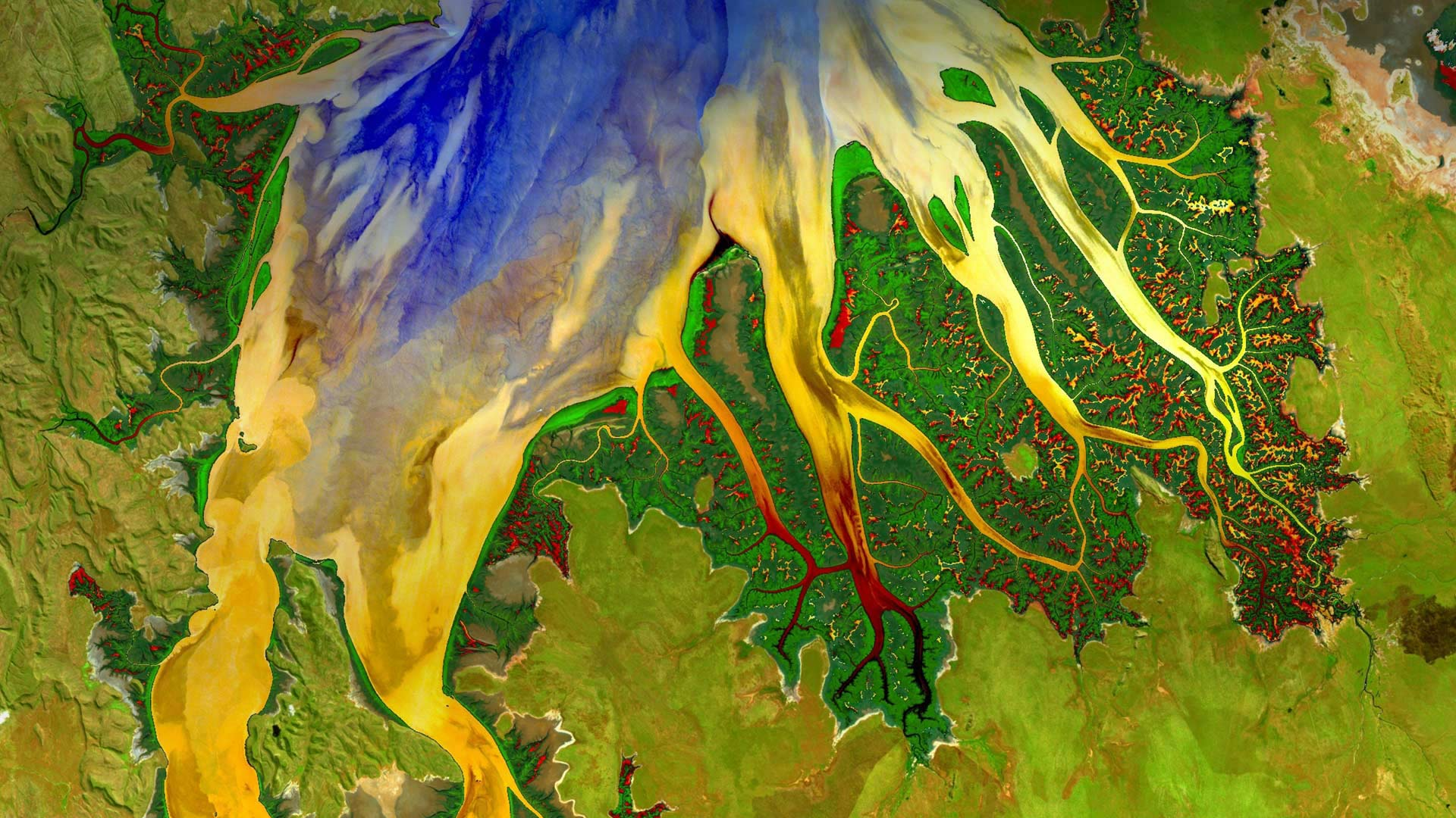 Cambridge Gulf and estuary in Western Australia photographed by Landsat 8 satellite (© World History Archive/Alamy)