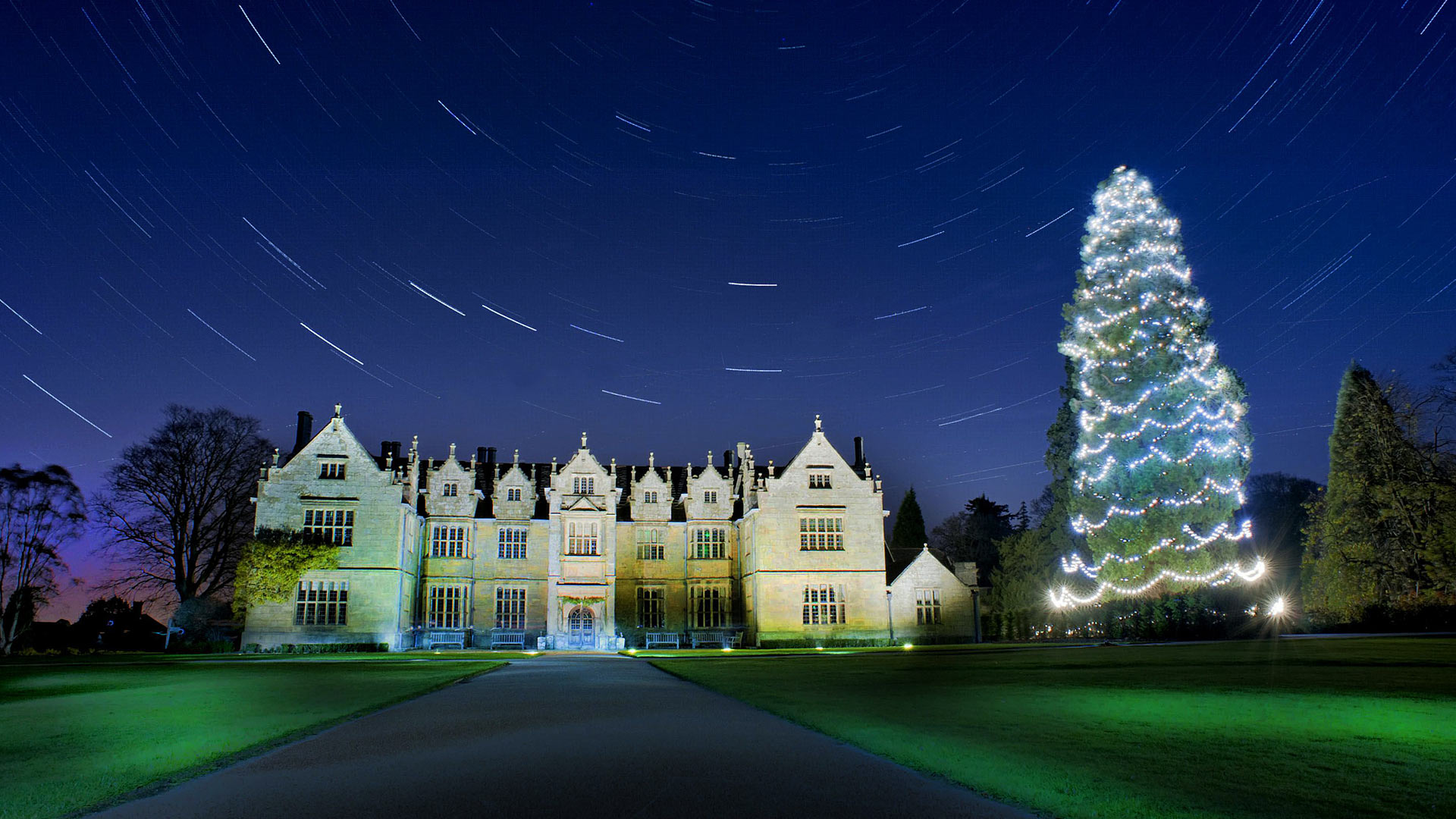 Star trails above the Christmas tree at Wakehurst, West Sussex (© Andrew Hasson/REX/Shutterstock)