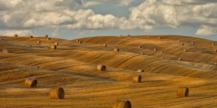 Hay bales in Tuscany, Italy (© Chris Ryan/plainpicture)